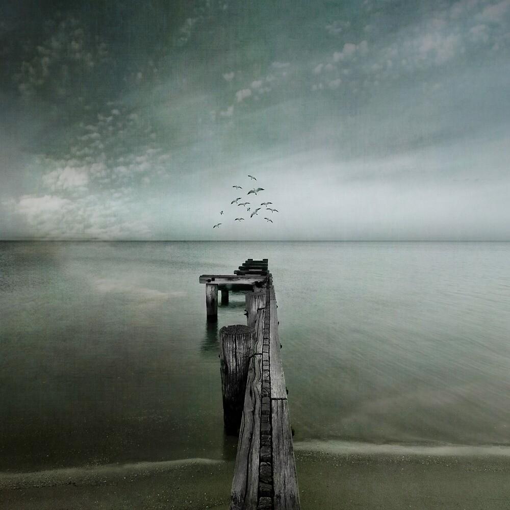 Flight of Fancy by Melinda Kerr