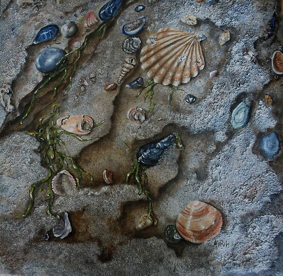 Sand and Shells - oil painting by Avril Brand