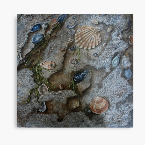 Sand and Shells - oil painting Metal Print