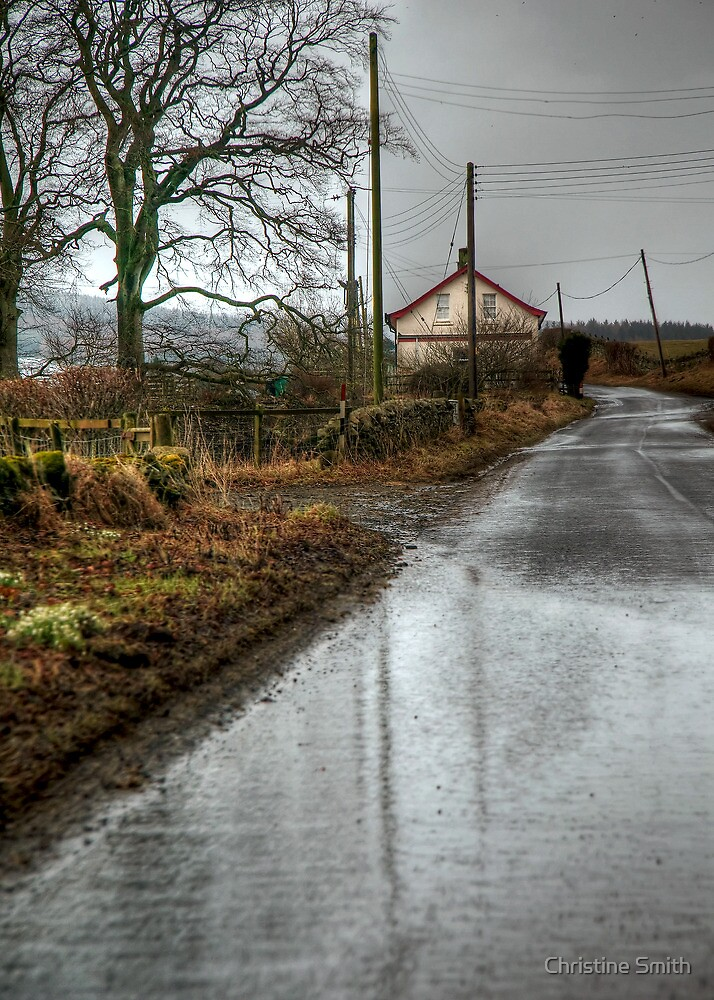 A Wet and Cold Winters Day by Christine Smith