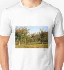 Apple orchard Unisex T-Shirt