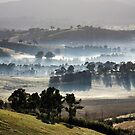 landscapes #214, long shadows by stickelsimages