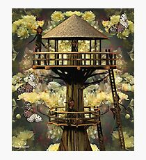 The Brownies Treehouse Photographic Print