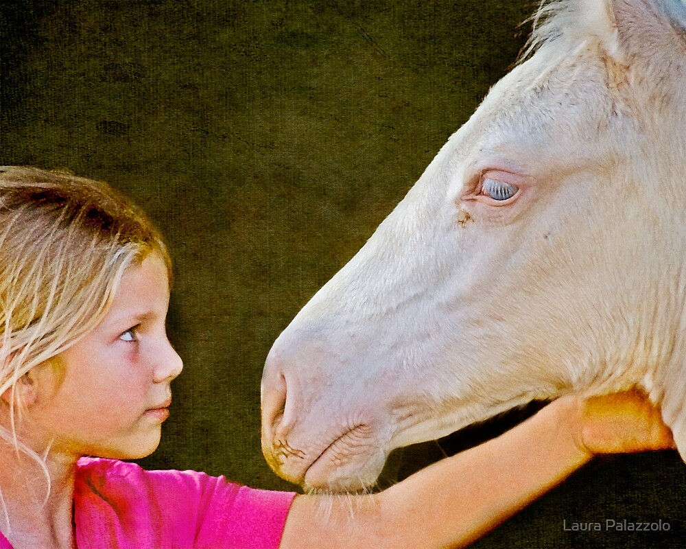 The Little Horse Whisperer by Laura Palazzolo