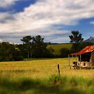 Little House on the Prairie by Kym Howard