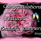 Beautiful Banners by waxyfrog