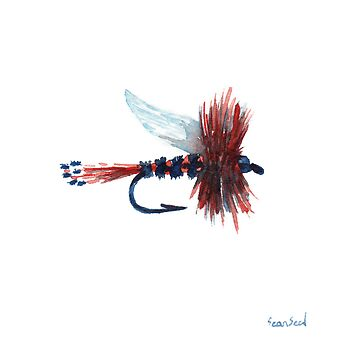American Fly by Sseal