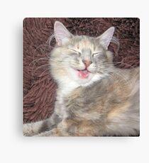 cute kitten smiling  Canvas Print