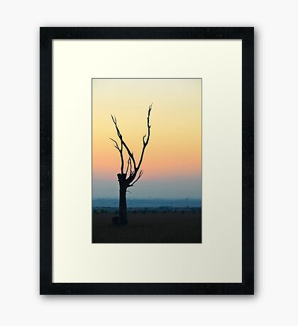See you in the morning Framed Print