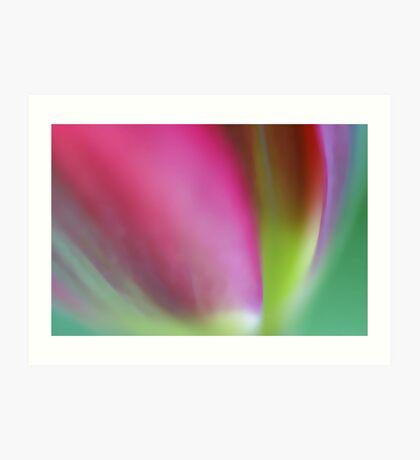 Multicolored  Art Print