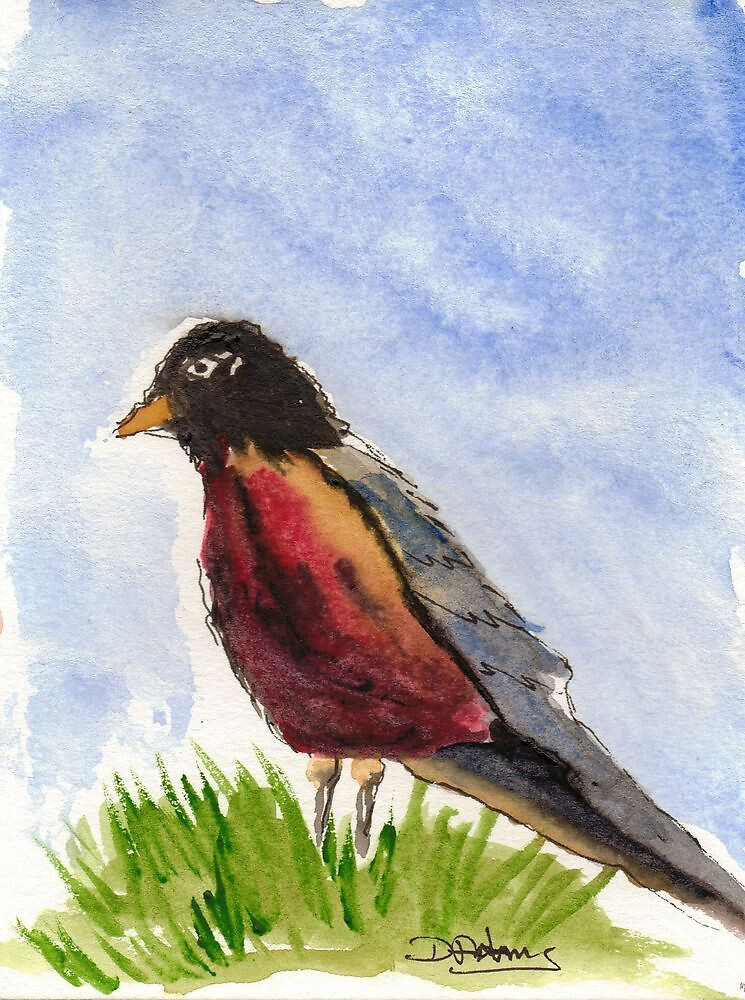 Eurasian Bullfinch by Mitch Adams