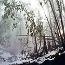 Misty Trees, Mount Buffalo by Roz McQuillan