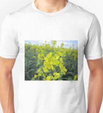rapeseed T-Shirt