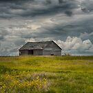 Under Heavy Skies by IanMcGregor