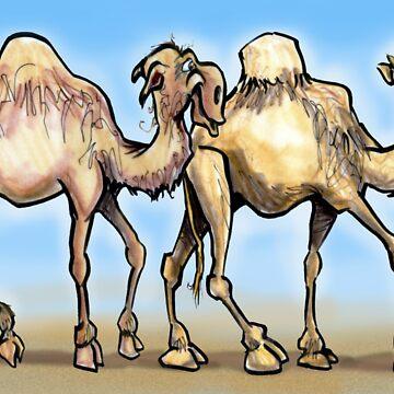 Camels by kevinmiddleton