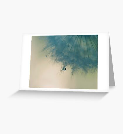 sometimes you only need one wish Greeting Card