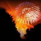 Happy 4th, 2011 !!! © by Dawn Becker