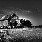Delaware Barn by Marcia Rubin