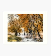 River Flooding #2 Art Print