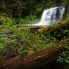 Middle Siouxon Falls II by Tula Top