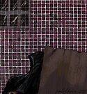 """Dark Matter"" by Patrice Baldwin"