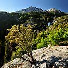 Waterfall in Dry Fork Canyon, Utah by Ryan Houston