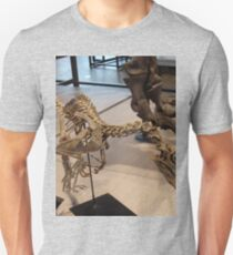 Random Velociraptor Unisex T-Shirt