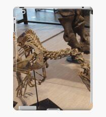 Random Velociraptor iPad Case/Skin