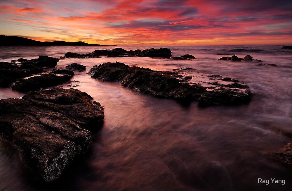 Island of Rocks by Ray Yang