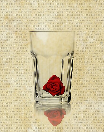 Viewing the world in a Rose glass? by Gwoeii