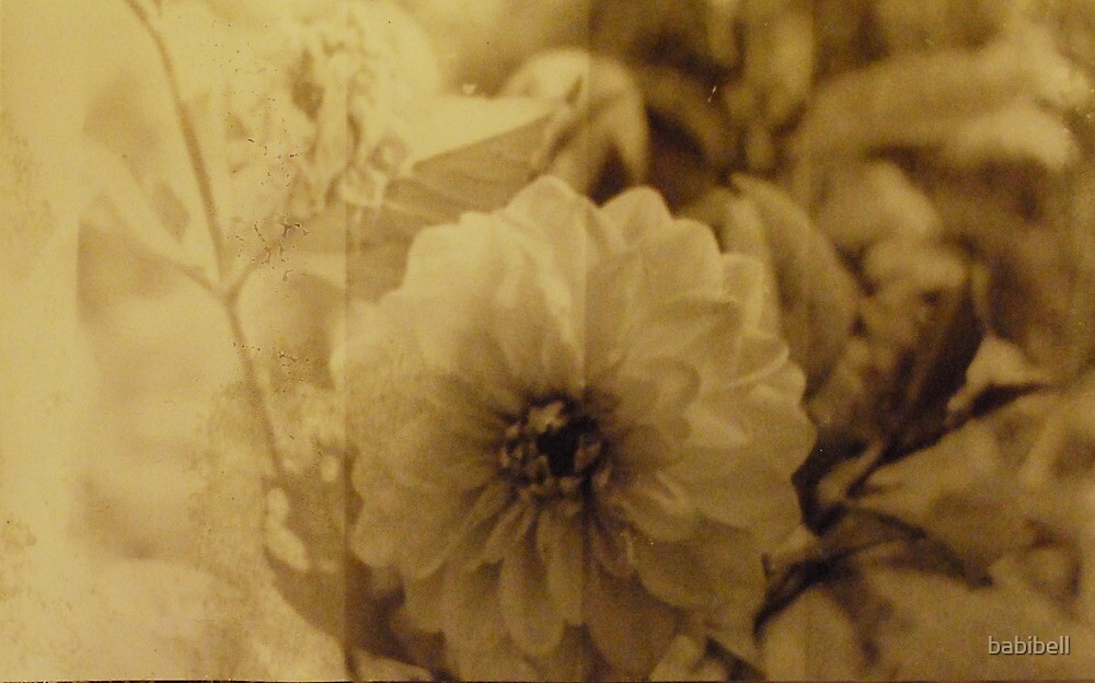 Vintage Flower 3 by babibell