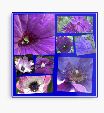 Pink and Purple Passion Floral Collage Metallbild