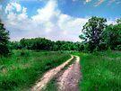 Inviting Path by Marcia Rubin