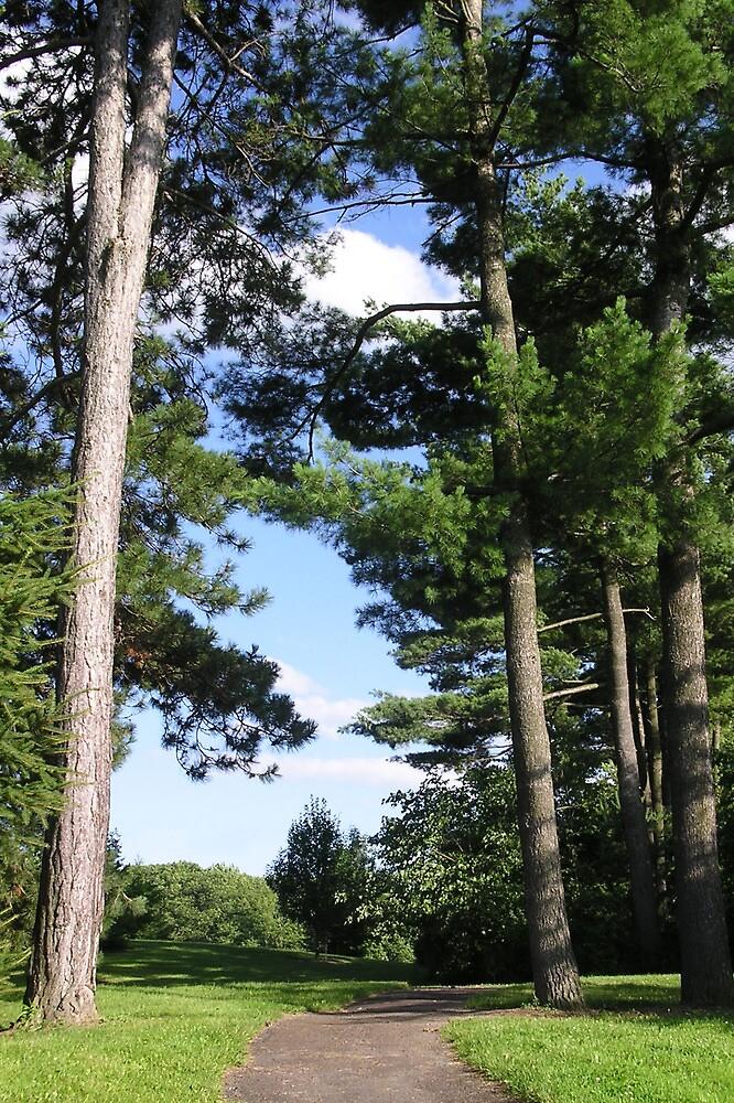 Cornell Arboretum 2 by Mark  Reep