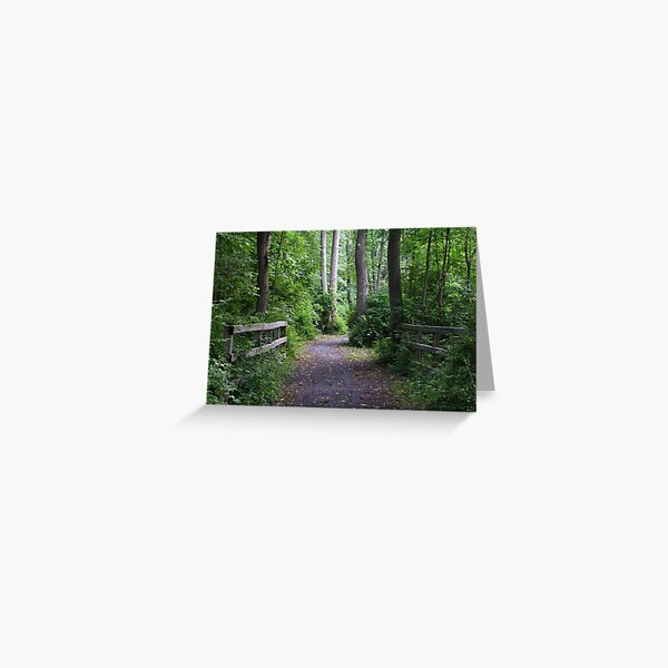 Catharine Valley Trail 2 Greeting Card