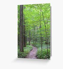 Six Mile Creek 2 Greeting Card