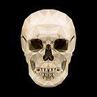Skull by CAN CALISKAN