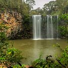 Dangar Falls 2015 by Michael Matthews