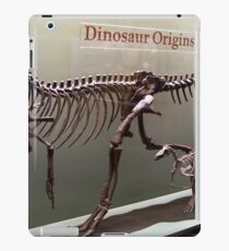 Ancient Wannanosaurus iPad Case/Skin