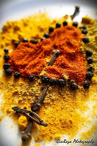 Spice Love by Ginger