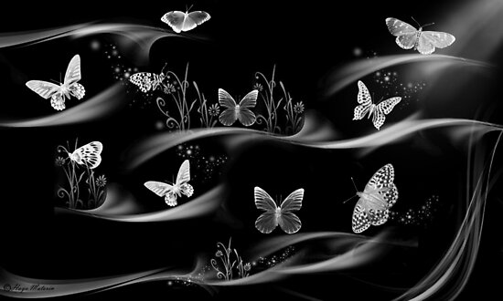 Butterflies-they always give feeling of freedom/ Black&white-Art + Design Products by haya1812