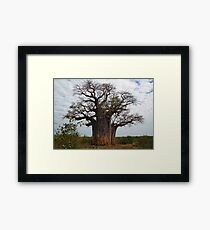 Baobab Tree, Botswana Framed Print