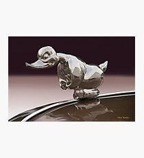 Angry Duck Hood Ornament Photographic Print