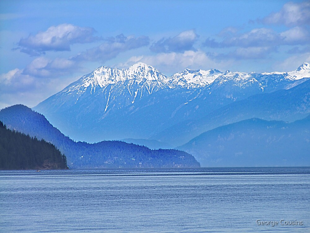 Lower Arrow Lake (1) by George Cousins