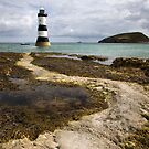 Black Point & Puffin Island by SteveMG