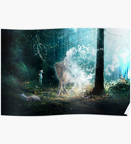 FOREST SONG Poster
