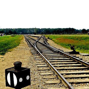 Auschwitz: Birkenau Traintracks by TheClarkes