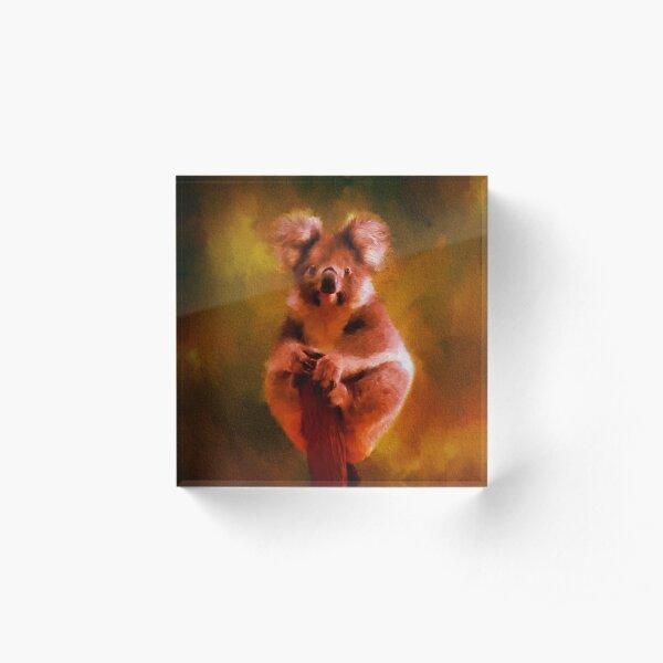 Koala in the Burning Australian Bush Acrylic Block