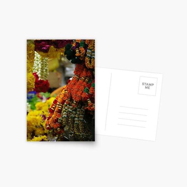 Floral Archway Postcard