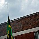 Jamaican Pride by Melissa Fuller